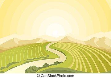 campagna, campi, strabiliante, alba, sopra, paesaggio