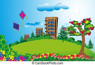 campi, appartamento, verde, lungo, alto