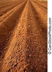 campi arati, suolo, argilla, rosso, agricoltura