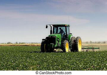 campo, aratura, contadino