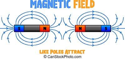 campo, attrarre, come, poli, magnetico