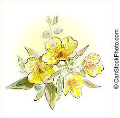 campo, fiori, giallo