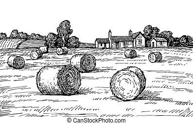 campo, haystacks.