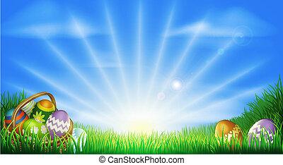 campo, uova, pasqua, fondo