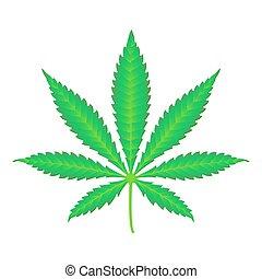 canapa, vettore, marijuana, illustrazione, realistico