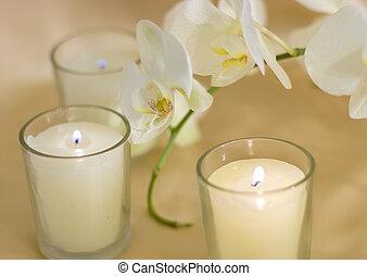 candele, sopra, aroma, fondo, seta, orchidee