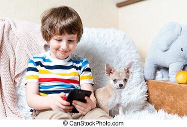 capretto, video, casa, gioco, chihuahua., tempo, godere, osservare, ozio, insieme, cucciolo, ragazzo, gioco, poco, divertente, linea, usando, gioco, sorridere felice, mobile, libero, cellphone., piccolo cane, bambino, apps