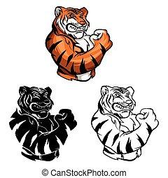 carattere, tiger, libro, coloritura