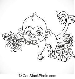 carino, coloritura, scimmia, prese, coda, lazily, ramo, profili, dire bugie, banane