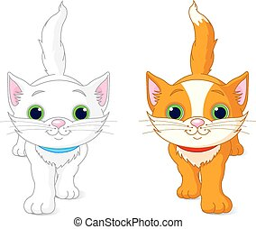 carino, due, gattini