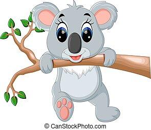 carino, koala, cartone animato