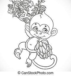 carino, scimmia, delineato, isolato, fondo, bambino, bianco, banane