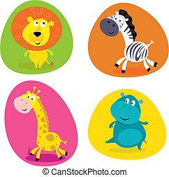 carino, set, animali, -, safari, lion...