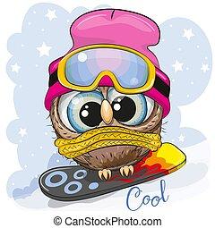 carino, snowboard, cartone animato, gufo