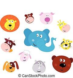 carino, sorridente, testa, icone animali