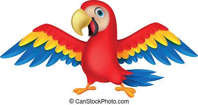 carino, uccello, pappagallo, cartone animato