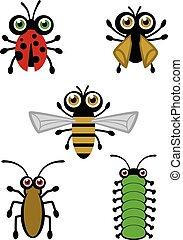 carino, vectors, insetto