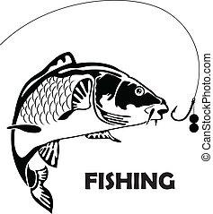 carpa, esca, fish