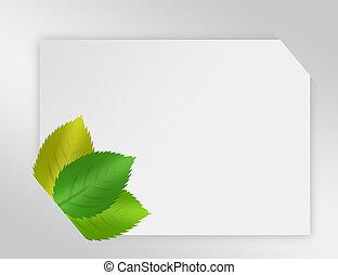 carta, vuoto, natura