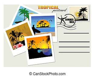cartolina, tropicale