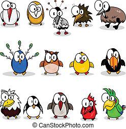 cartone animato, collezione, uccelli