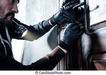 casa, rottura, ladro, professionale
