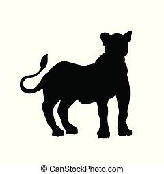 cat., silhouette, nero, animali, leone, leonessa, icona, isolato, bianco, standing, selvatico, image., africano, fondo.
