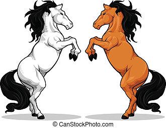 cavallo, stallone, o, prancing
