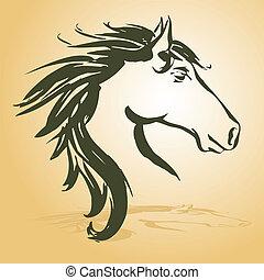 cavallo, testa