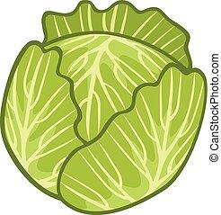 cavolo, verde, illustrazione