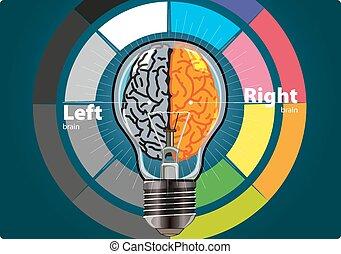 cervello, destra, sinistra