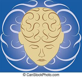 cervello, labirinto