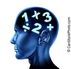 cervello, matematica