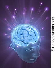 cervello, mind), (the, potere
