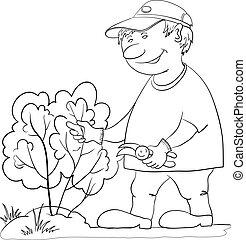 cespuglio, contorno, giardiniere, tagli