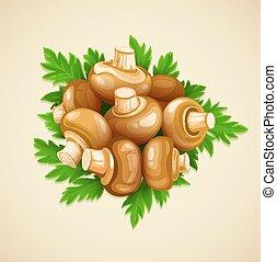 champignons, cibo organico, prezzemolo, funghi, verde