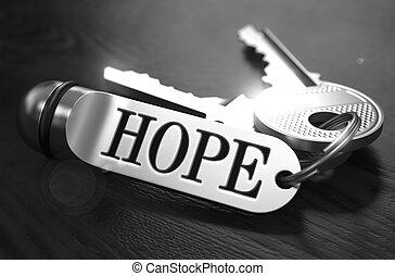 chiavi, concept., speranza, keyring.