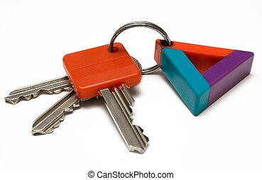 chiavi, w/, etichetta, colorito
