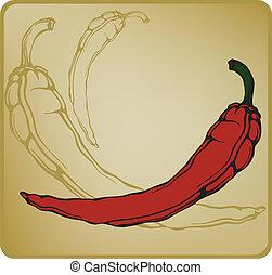 chilli, pepper., caldo, vettore, rosso, illustration.
