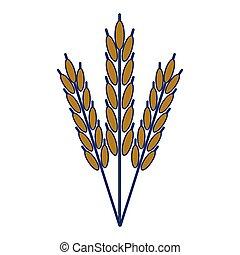 cibo, frumento, simbolo, naturale