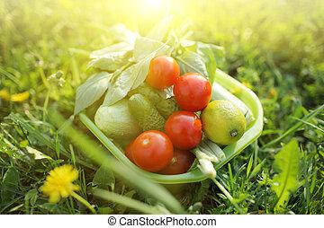 cibo, organico, fuori