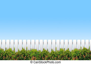 cielo bianco blu, arbusti, recinto