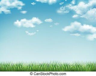 cielo blu, erba, campo verde