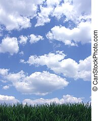 cielo blu, erba, verde