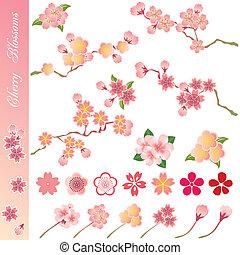 ciliegia, set, fiori, icone