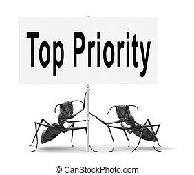 cima, molto, priorità, importante