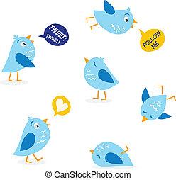 cinguettio, set, messaggio, uccelli