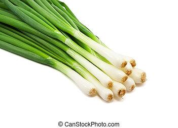 cipolla, verde