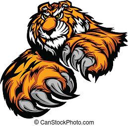 cla, corpo, tiger, mascotte, paws