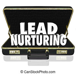 clienti, cartella, piombo, pros, vendite, istruzione, cura, campagna